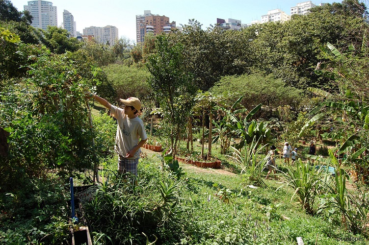 Urban Agriculture Magazine no. 33 – Urban Agroecology