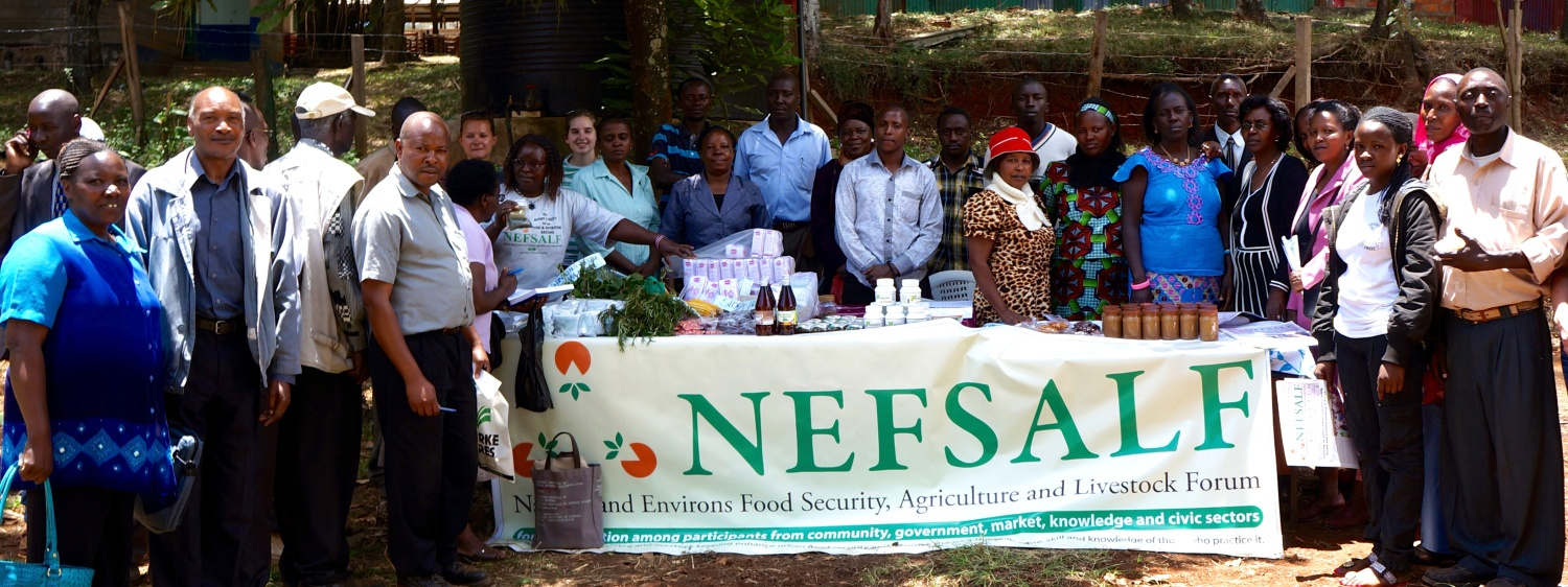 NEFSALF urban farmers