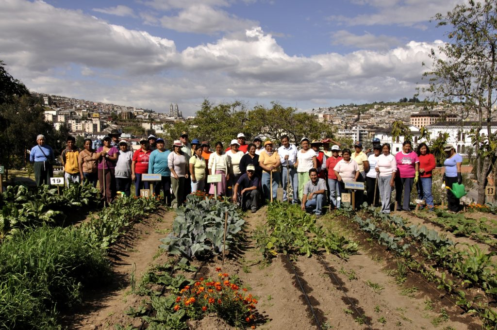 Quito's journey to better food security