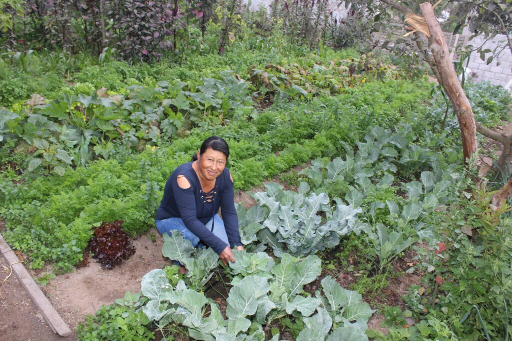 Addressing Gender Inequalities in Quito's Food System