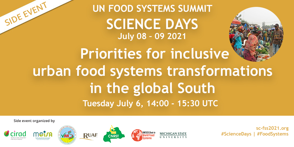Event: Priorities for inclusive urban food systems transformations in the Global South