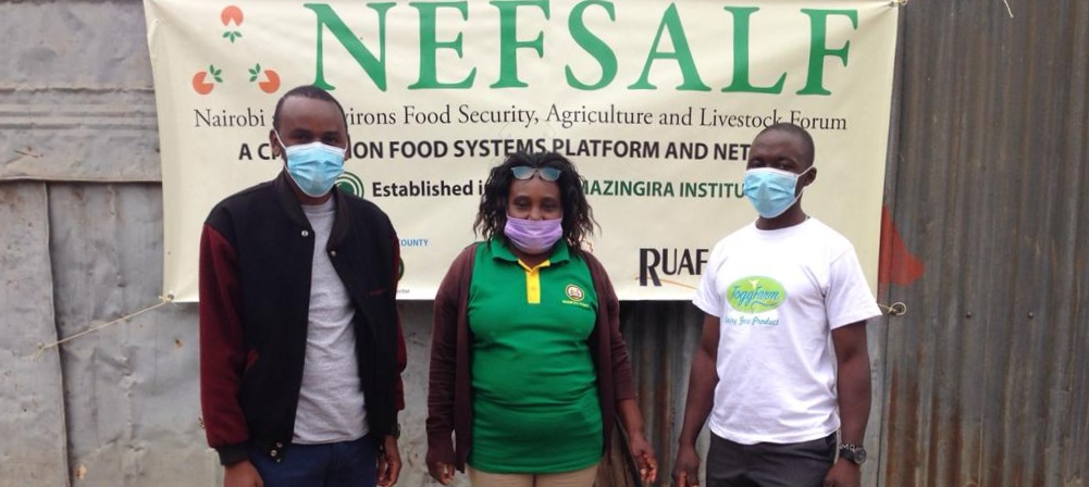 Agricultural extension support to urban farmers in Nairobi: The story of a farmers' field day
