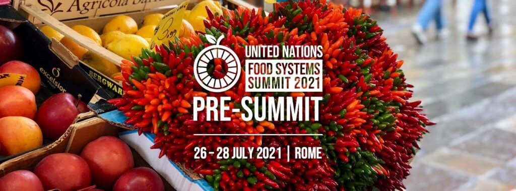 Empowering cities and citizens for food systems transformation
