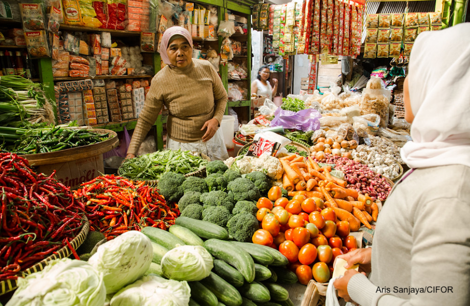 Webinar: Towards resilient city region food systems